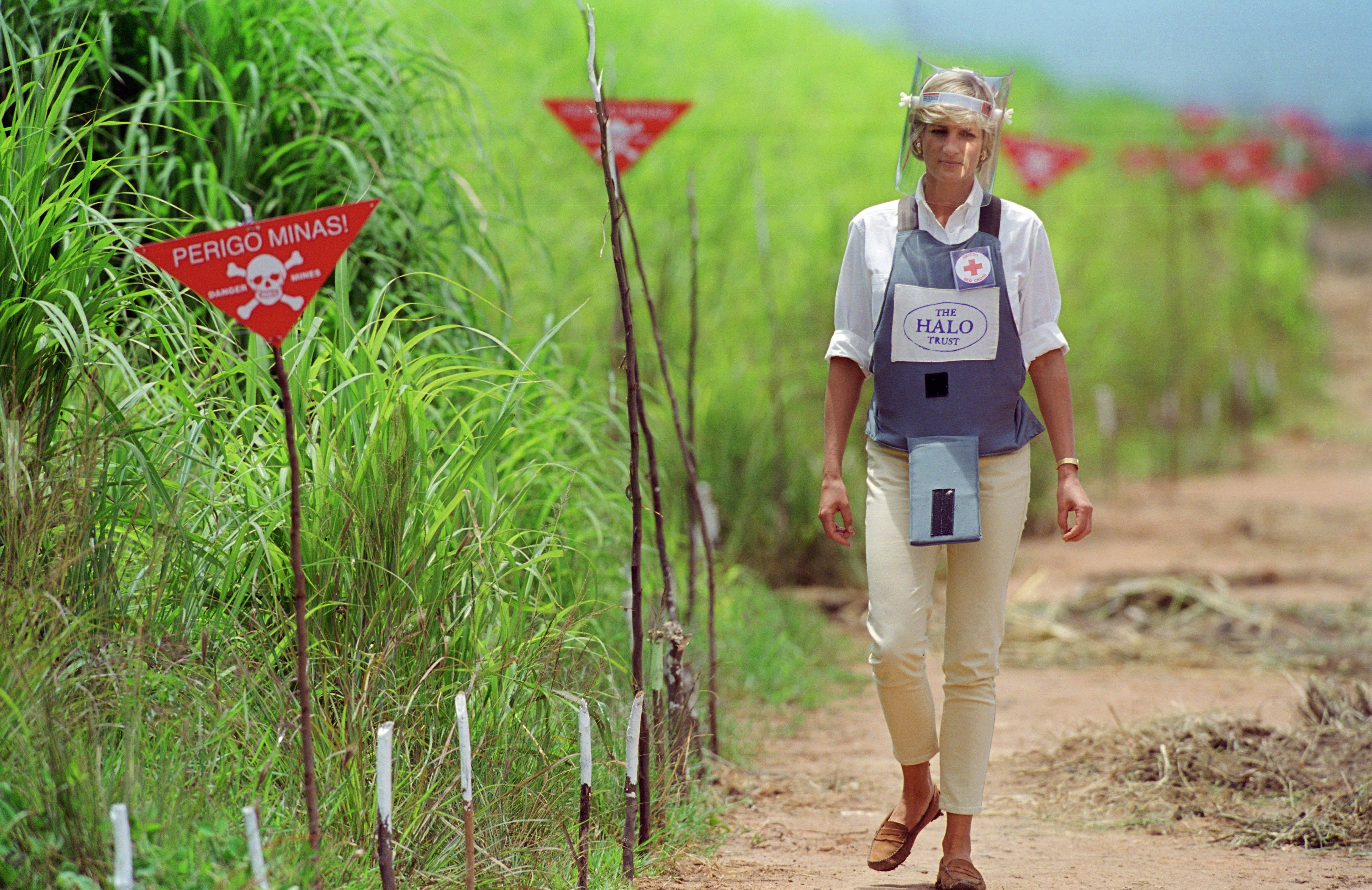 Diana charity work