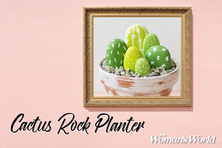 Cactus Rock Planter