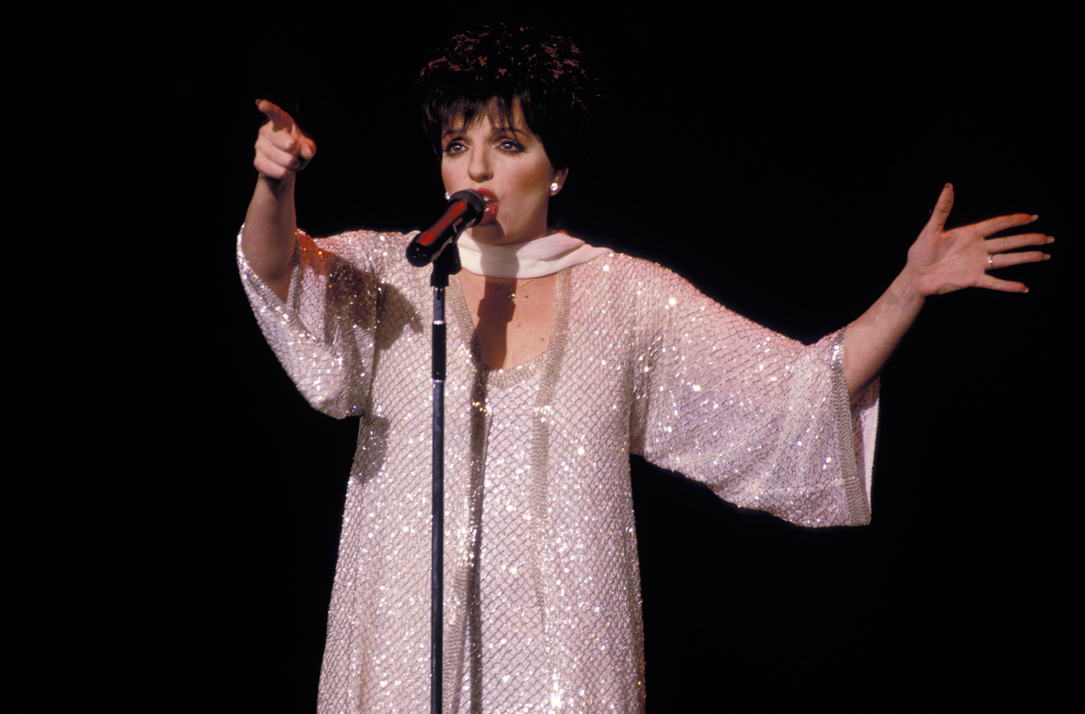 Liza Minnelli Singing 2