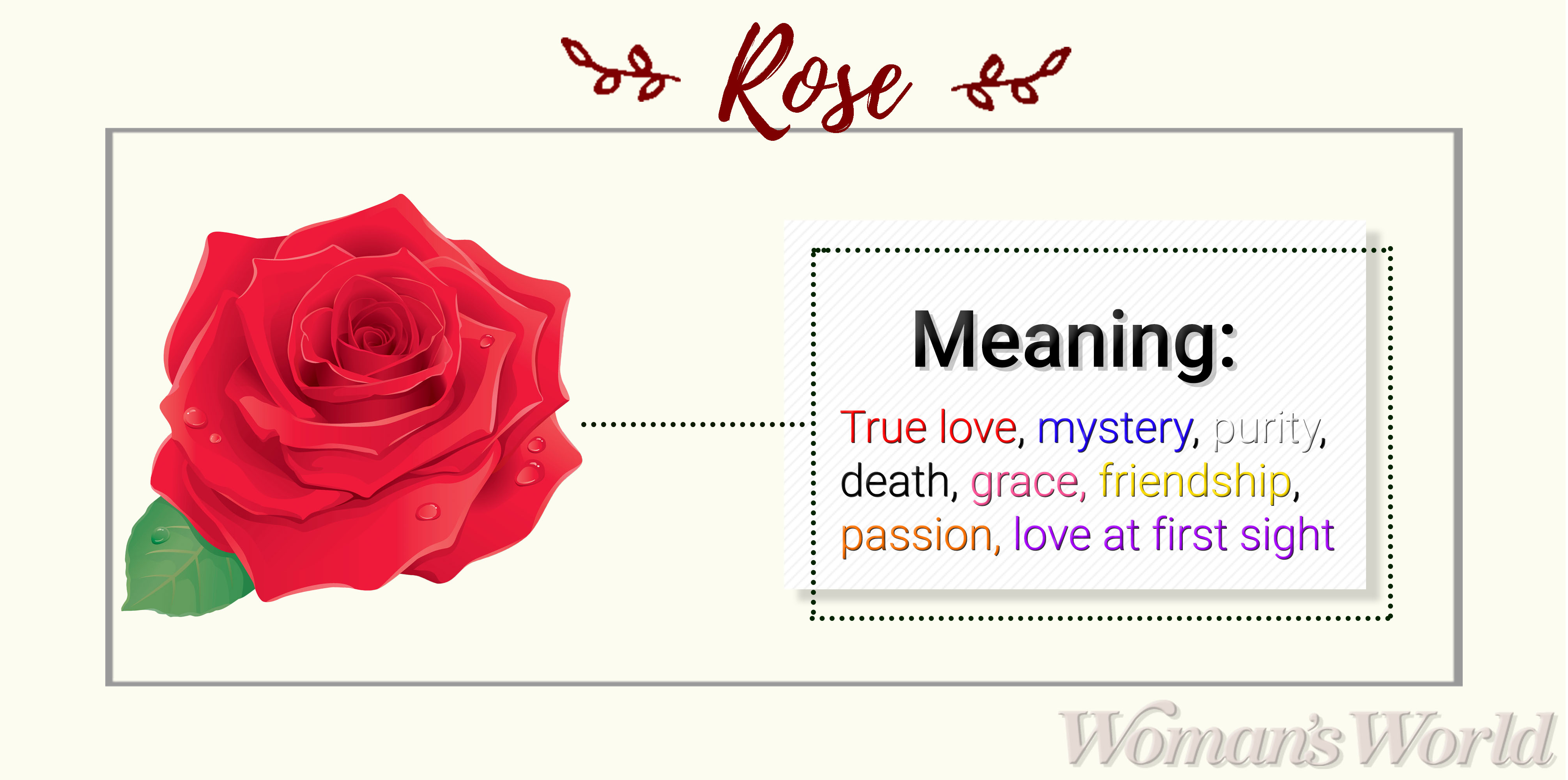 rose flower meaning