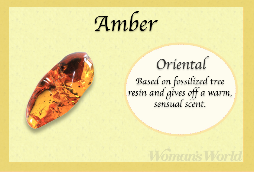 amber perfume note