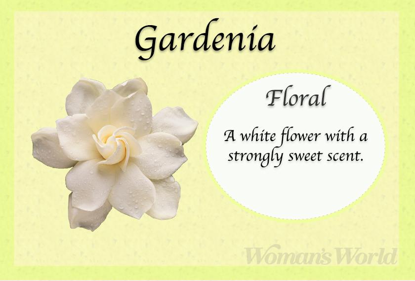 gardenia perfume note