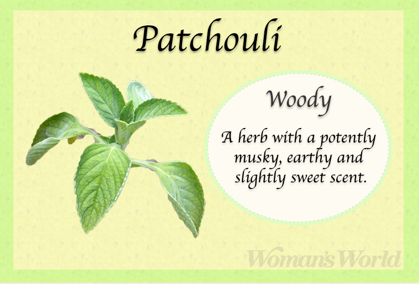 patchouli perfume note