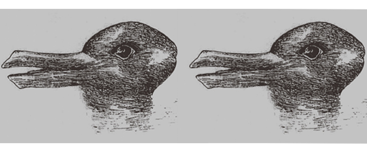 rabbit duck optical illusion