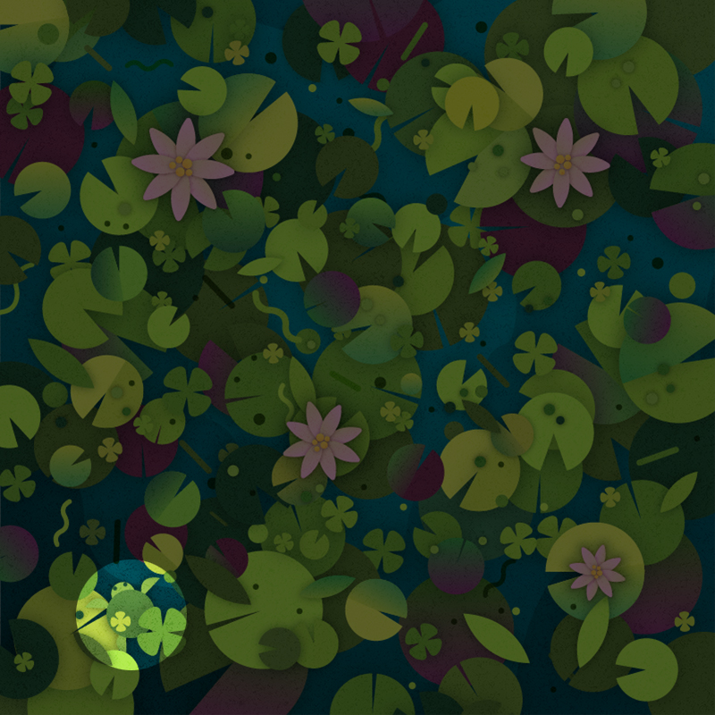 lilypads puzzle answer