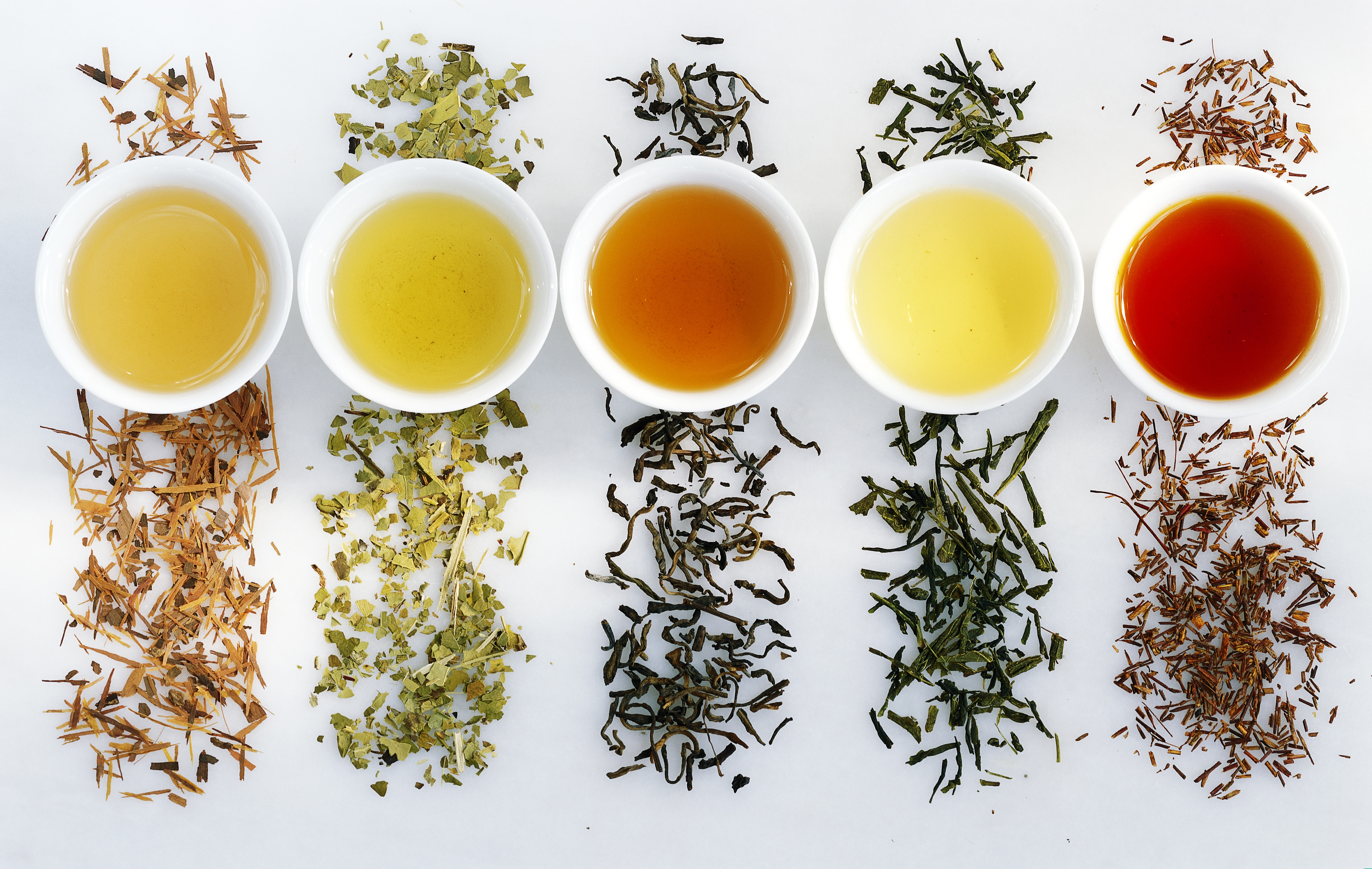 what is the best tea to drink to lose weight