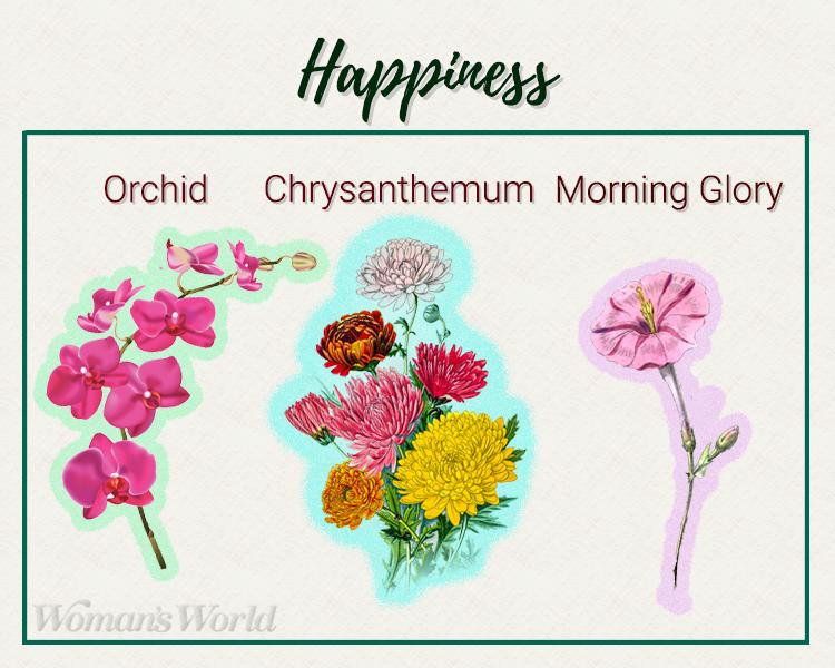 happiness plants