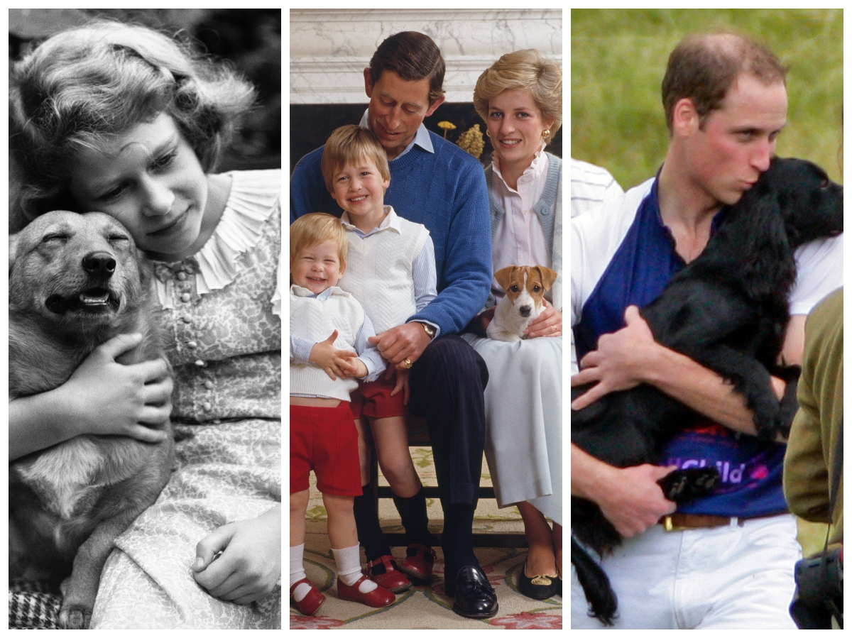 Members of the royal family with dogs