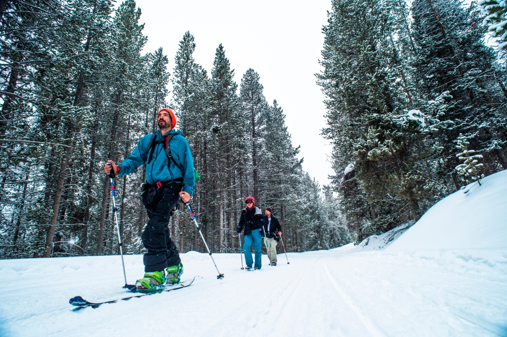People cross country skiing in Jockson Hole, Wyoming.