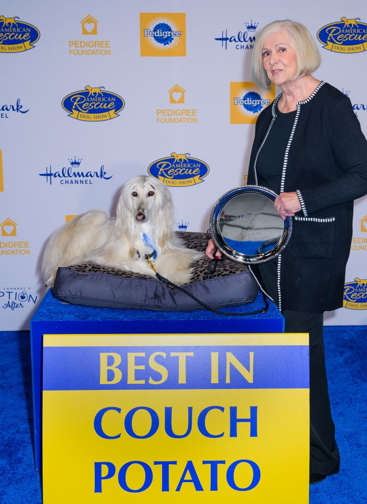 best in couch potato - spencer