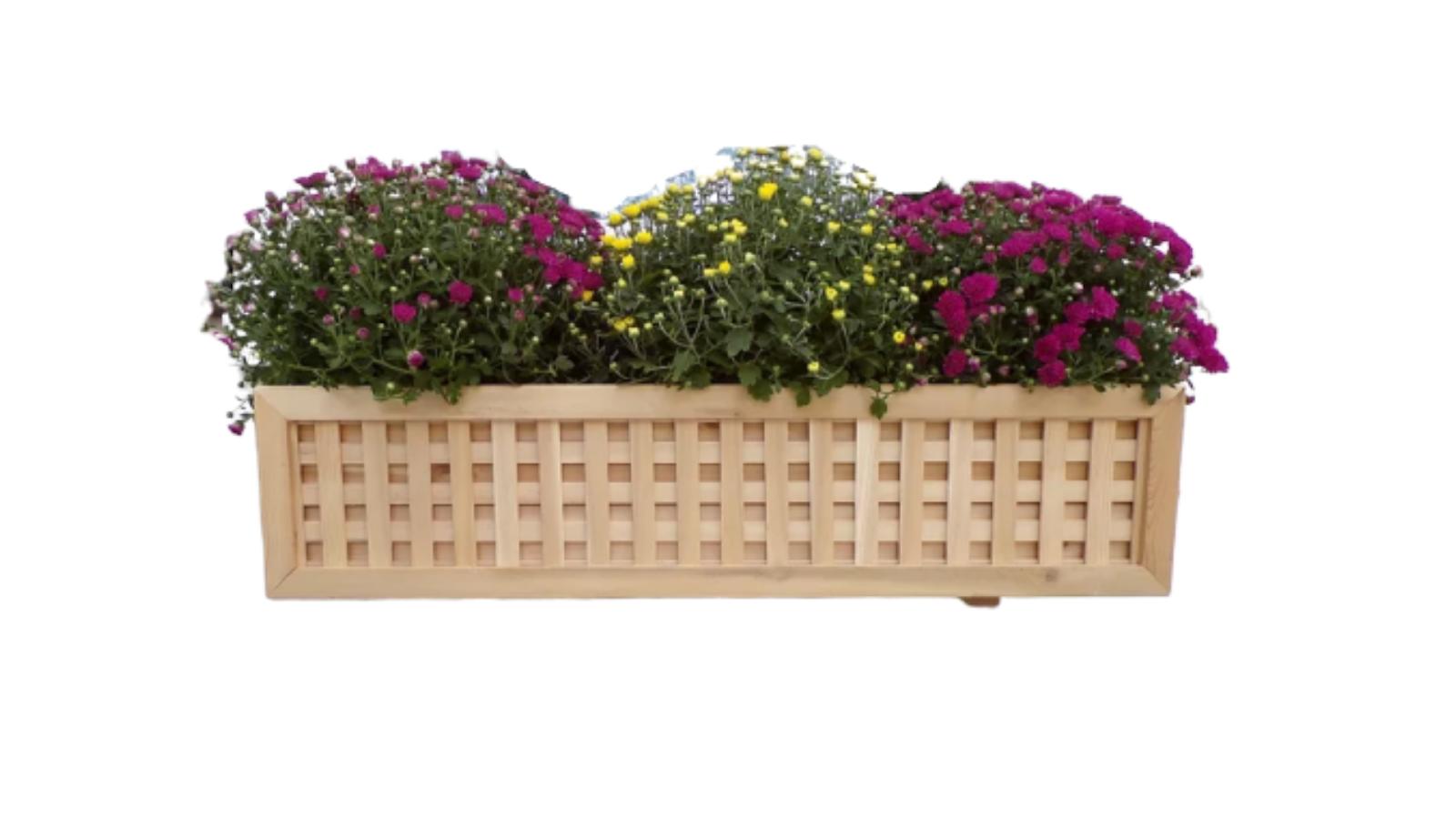 Best window box planters