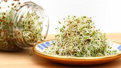 Jar of alfalfa spilling over onto plate