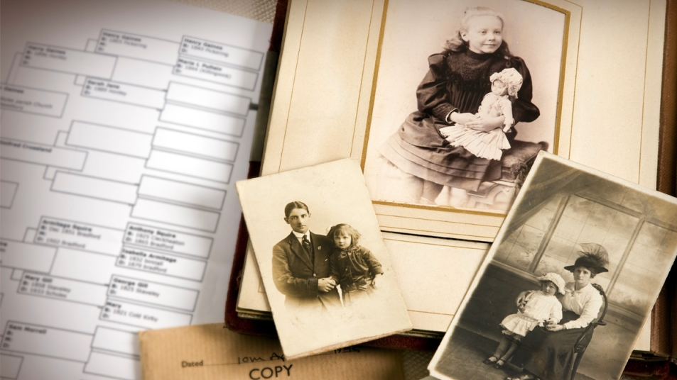 Old photographs next to family tree