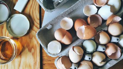 eggshells-sharpen-blender-blades