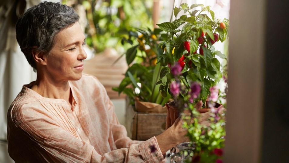 woman tending plants