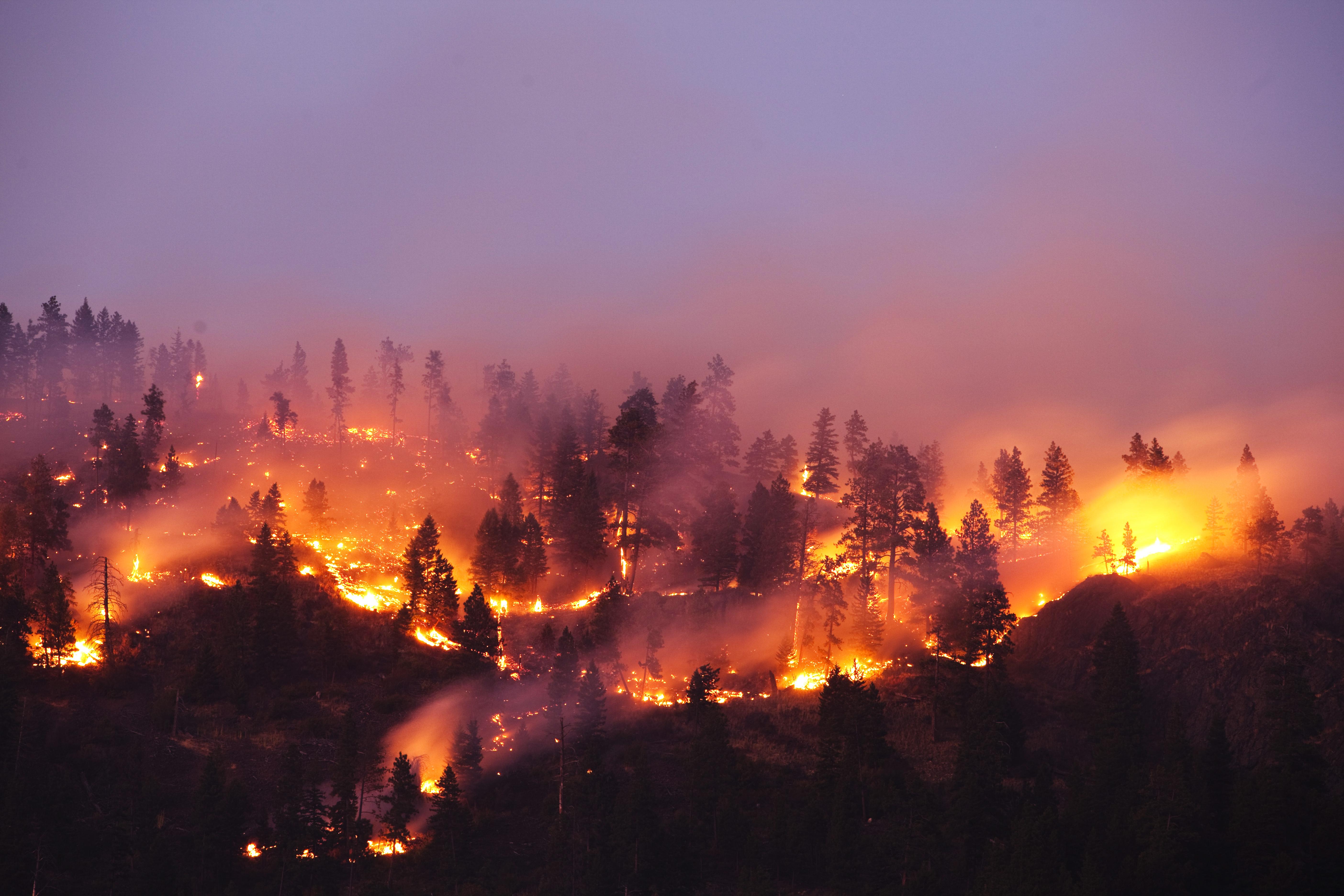 wildfire getty