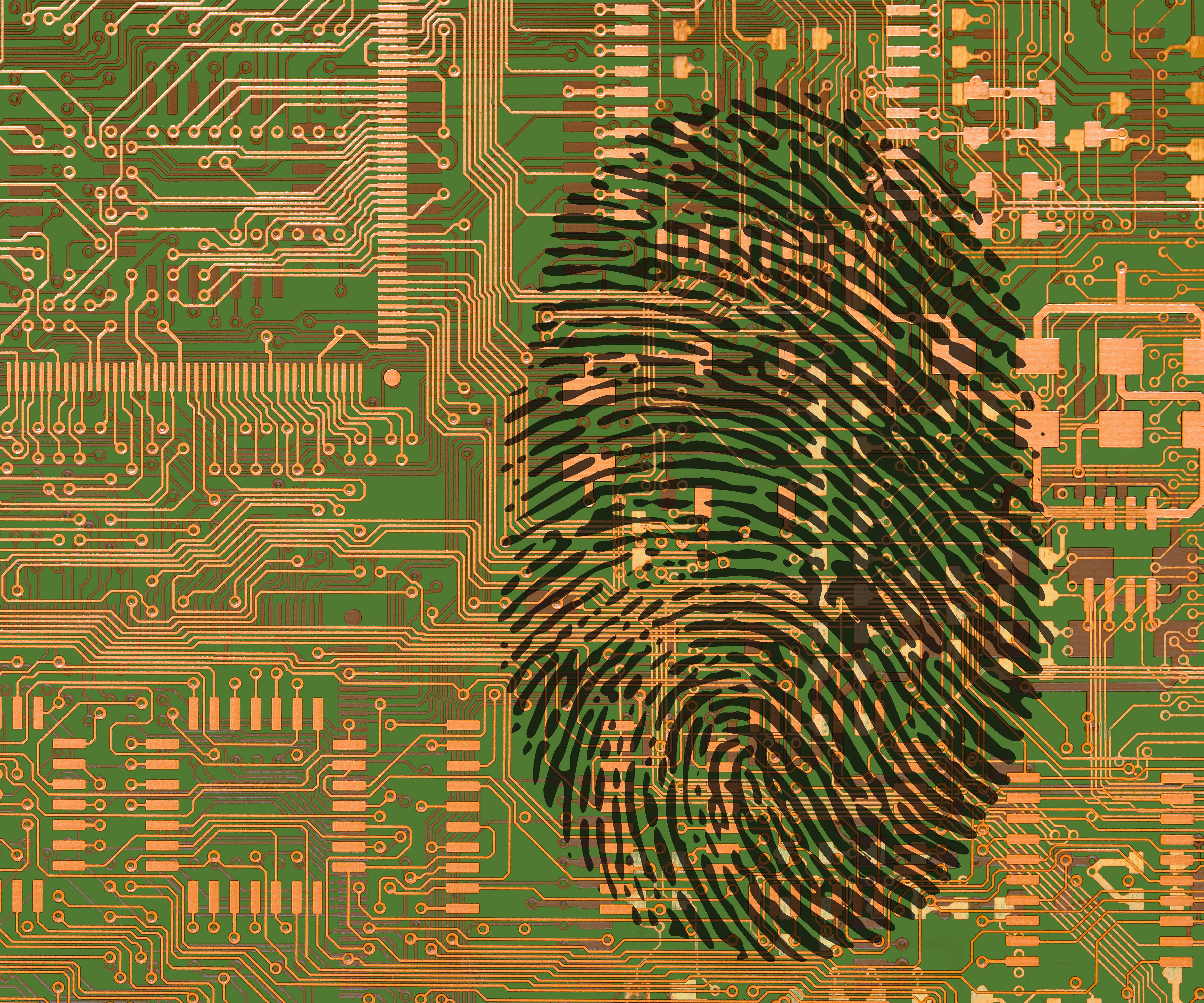 fingerprint board