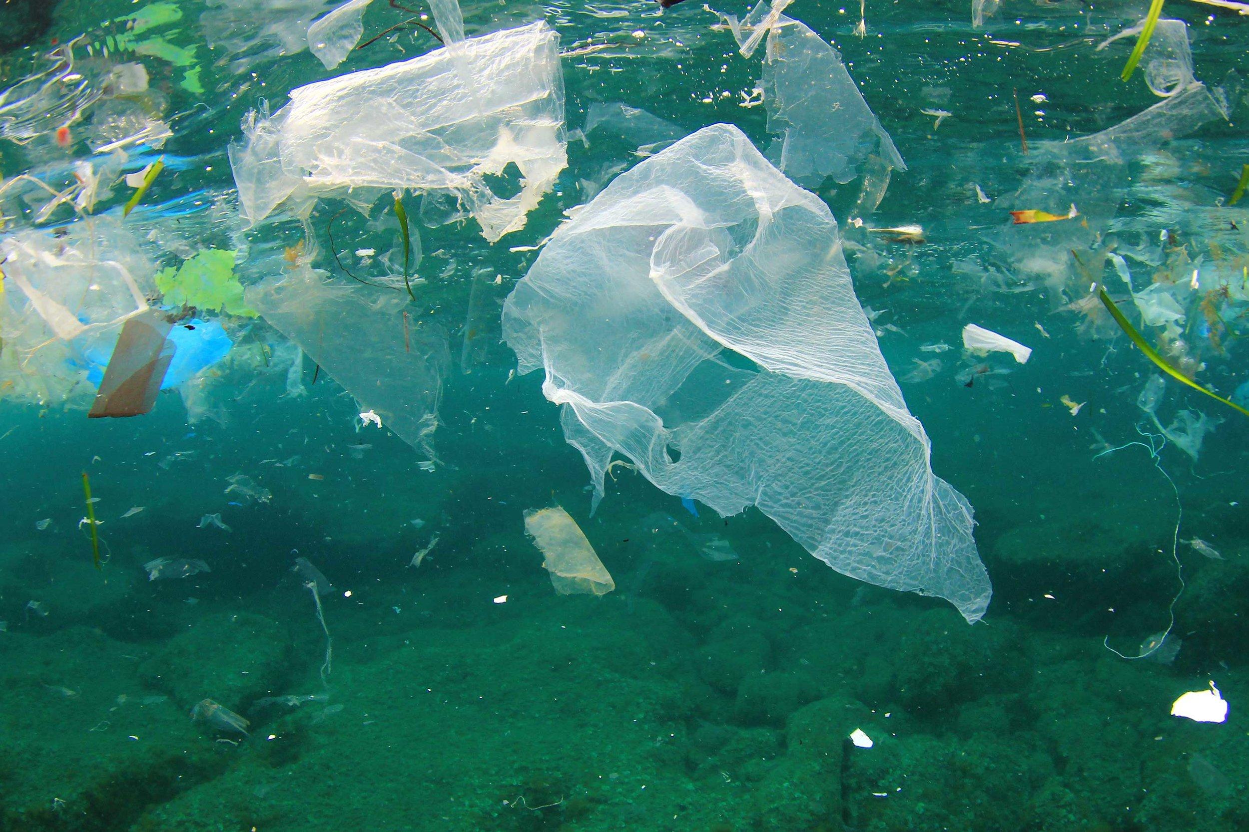 plastic in ocean yours