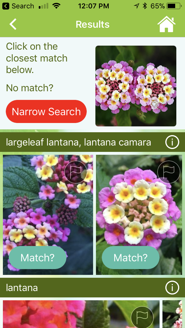 garden answers search results