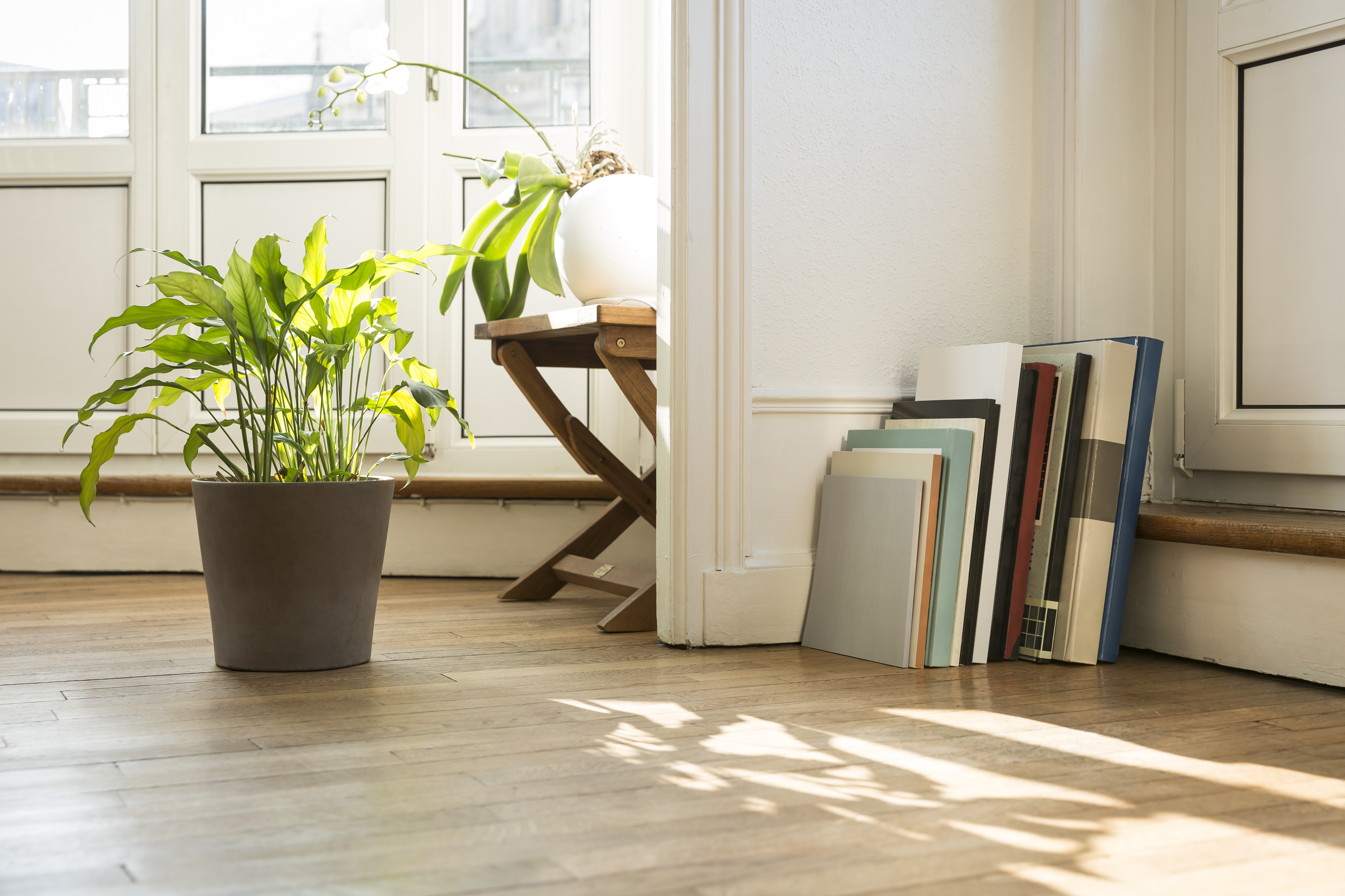 Home Styling Plants Getty Images