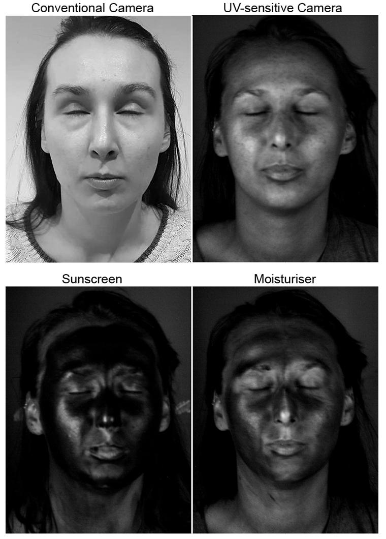 Sunscreen vs SPF moisturizer