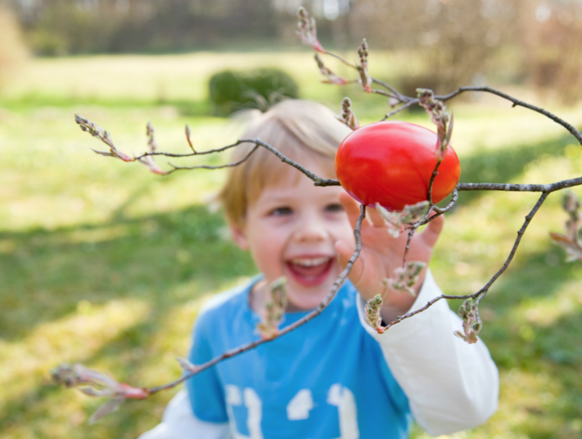 young child participating in outdoor easter egg hunt