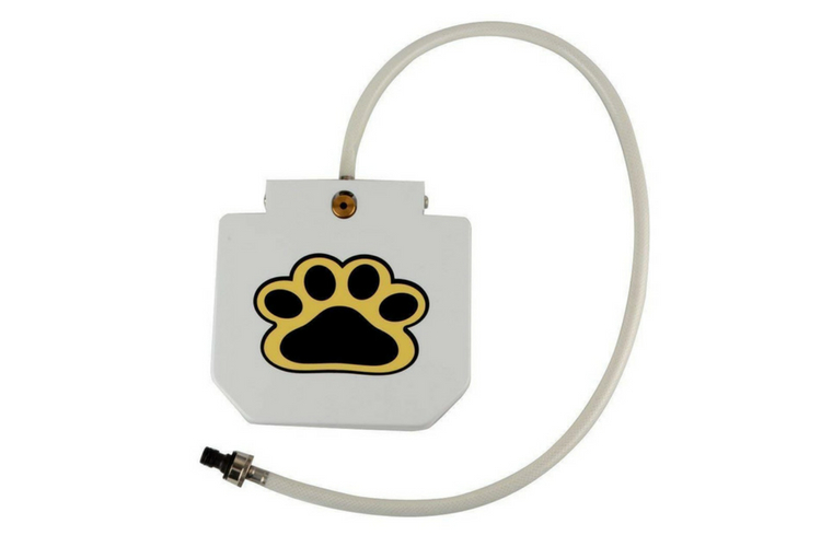 Outdoor Dog Water Fountain Hose Toy